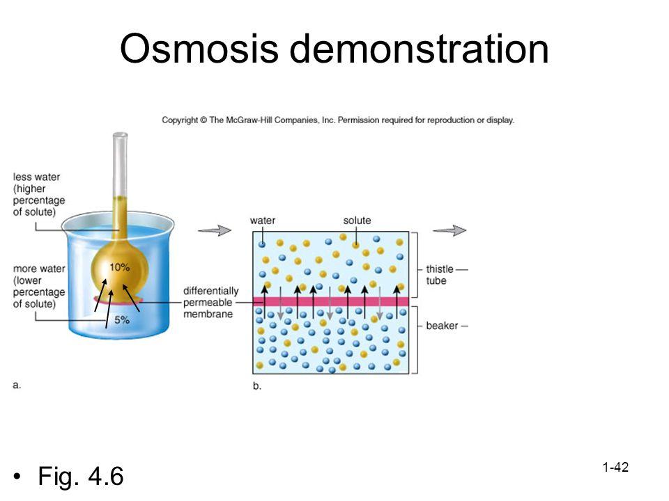 1-42 Osmosis demonstration Fig. 4.6