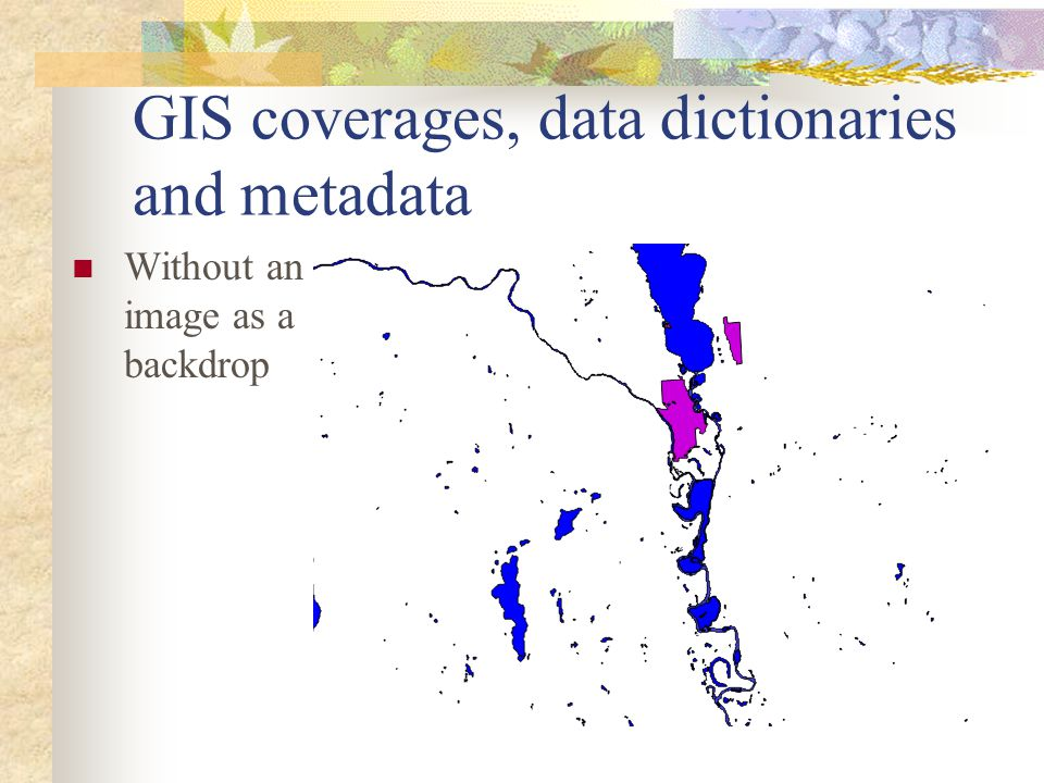 GIS coverages, data dictionaries and metadata Without an image as a backdrop