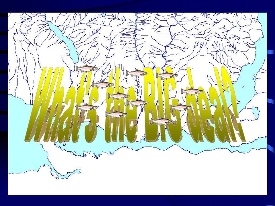 Single Family Rainwater Mgt.DNV encompasses 16,237 Ha.