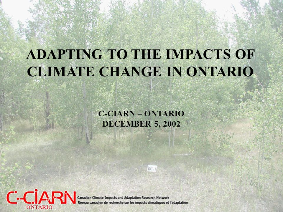 C-CIARN Mission The National, Regional and Sectoral C-CIARN Coordinating Offices will build a network of climate change researchers and stakeholders, facilitate research, and help to provide voice and visibility to impacts and adaptation issues.