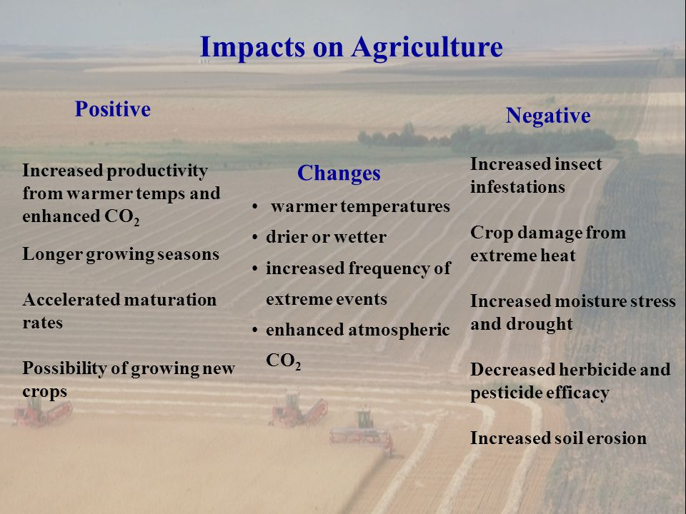 Impacts on Agriculture Changes warmer temperatures drier or wetter increased frequency of extreme events enhanced atmospheric CO 2 Positive Increased productivity from warmer temps and enhanced CO 2 Longer growing seasons Accelerated maturation rates Possibility of growing new crops Negative Increased insect infestations Crop damage from extreme heat Increased moisture stress and drought Decreased herbicide and pesticide efficacy Increased soil erosion