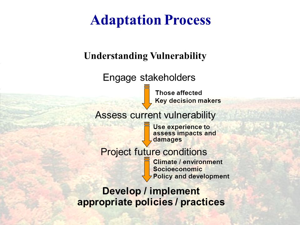 Adaptation Process Understanding Vulnerability Engage stakeholders Those affected Key decision makers Use experience to assess impacts and damages Assess current vulnerability Climate / environment Socioeconomic Policy and development Project future conditions Develop / implement appropriate policies / practices