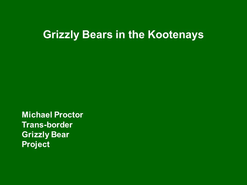 Grizzly Bears in the Kootenays Michael Proctor Trans-border Grizzly Bear Project