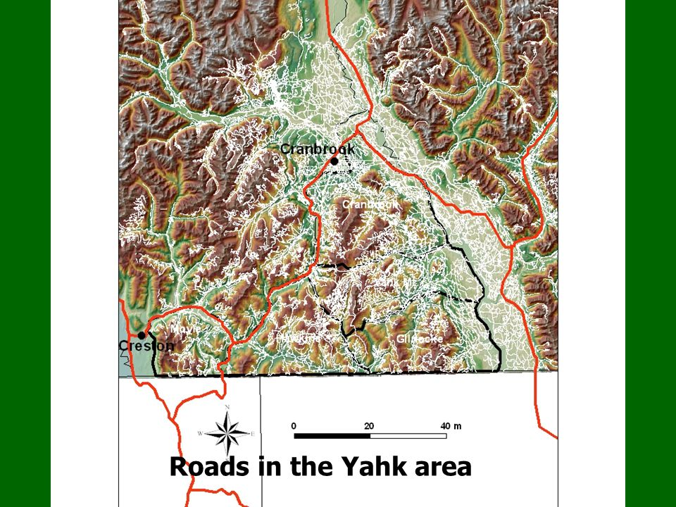 Grizzly bear management units Roads in the Yahk area