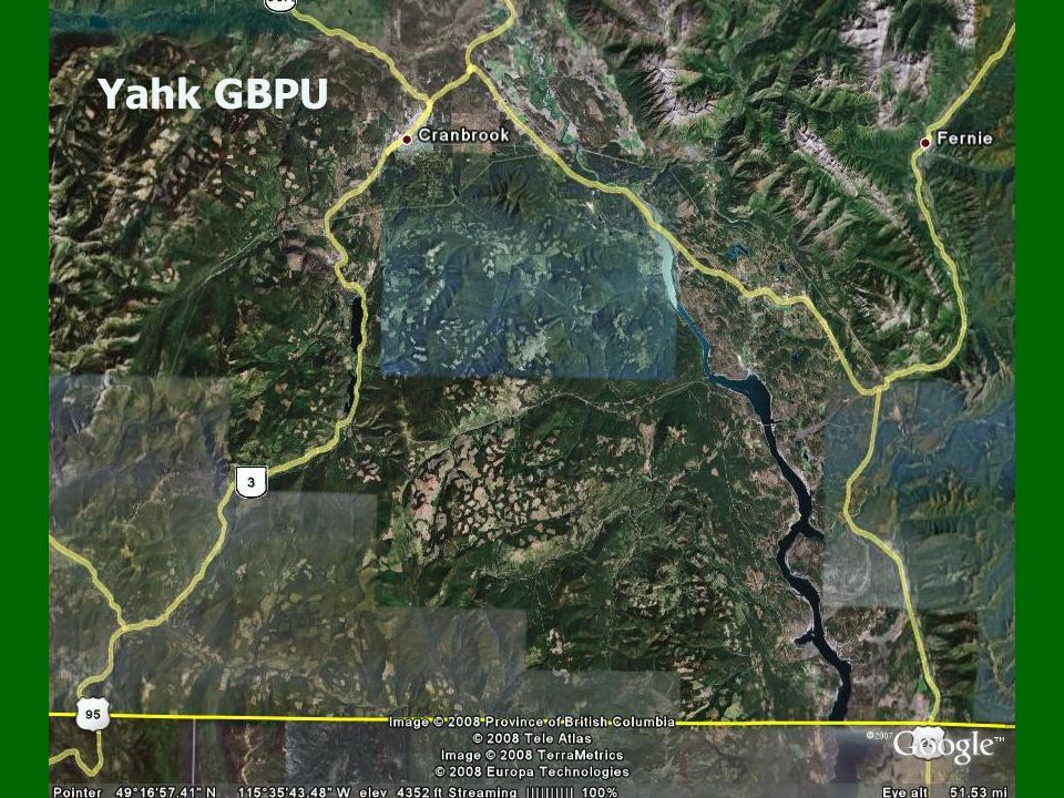 Higher quality grizzly bear habitat (green shaded) Black polygons encompass core habitat.