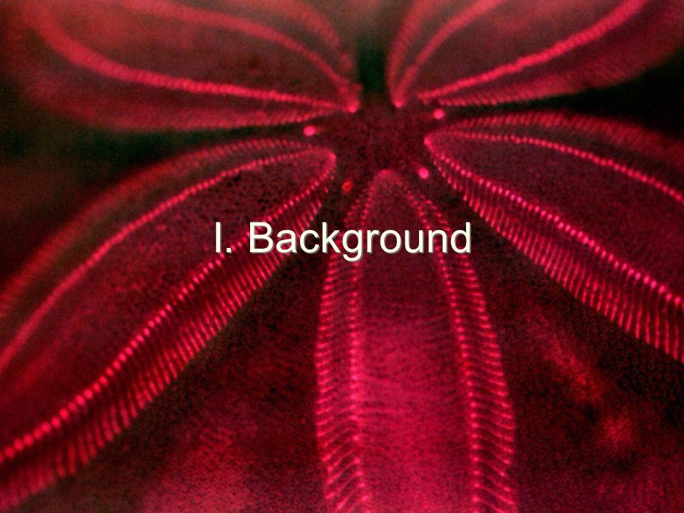 I. Background