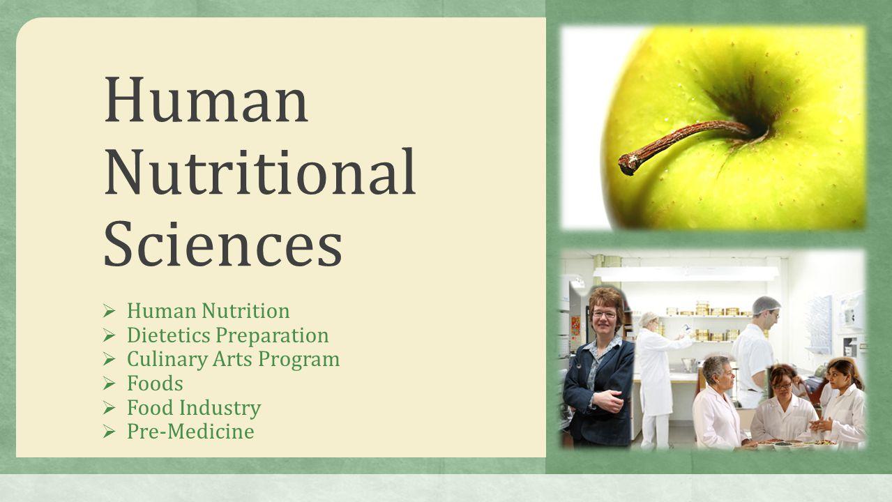 Human Nutritional Sciences  Human Nutrition  Dietetics Preparation  Culinary Arts Program  Foods  Food Industry  Pre-Medicine