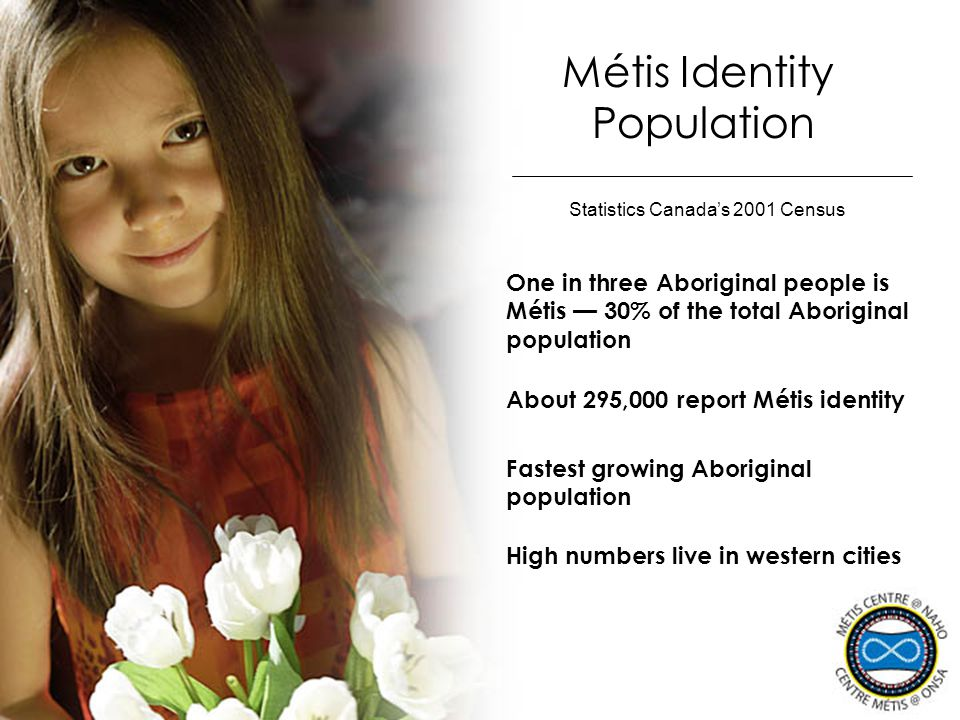 Métis Identity Population One in three Aboriginal people is Métis — 30% of the total Aboriginal population Statistics Canada's 2001 Census About 295,0