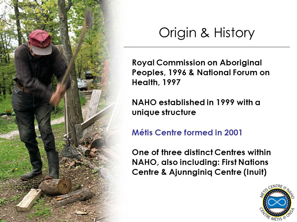 NAHO established in 1999 with a unique structure One of three distinct Centres within NAHO, also including: First Nations Centre & Ajunnginiq Centre (