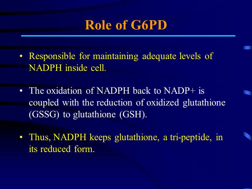 Role of G6PD Cont'd...