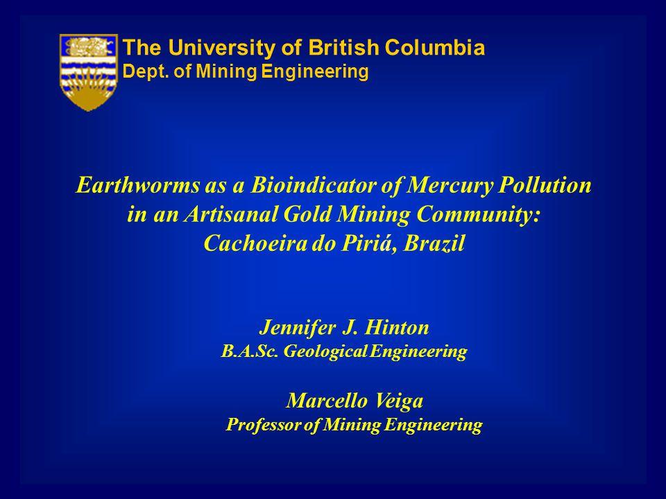 Earthworms as a Bioindicator of Mercury Pollution in an Artisanal Gold Mining Community: Cachoeira do Piriá, Brazil Jennifer J. Hinton B.A.Sc. Geologi