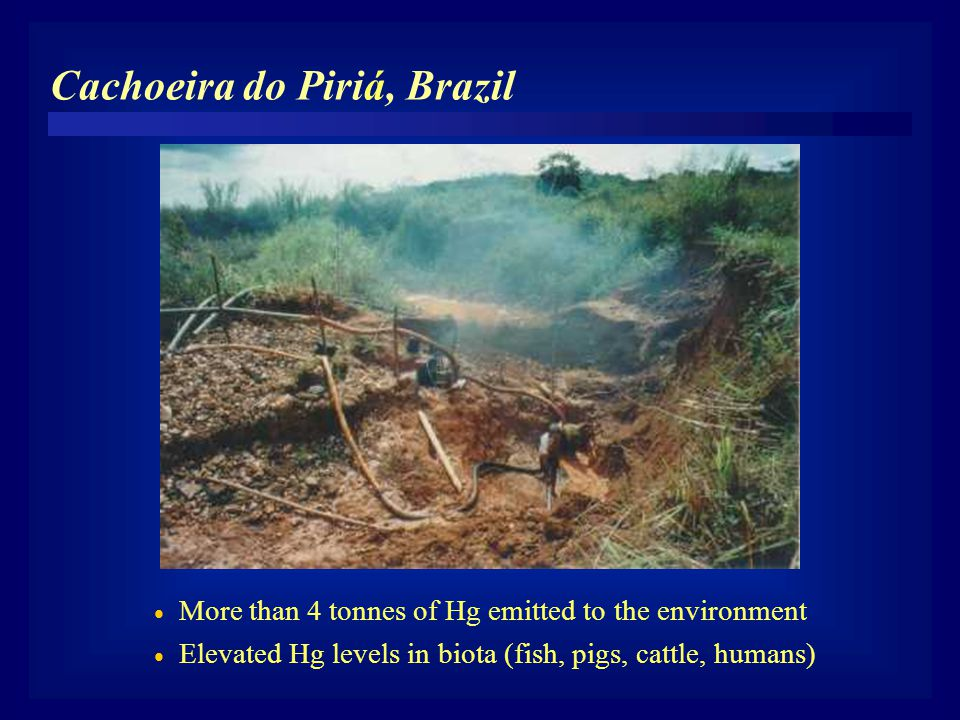  More than 4 tonnes of Hg emitted to the environment  Elevated Hg levels in biota (fish, pigs, cattle, humans) Cachoeira do Piriá, Brazil