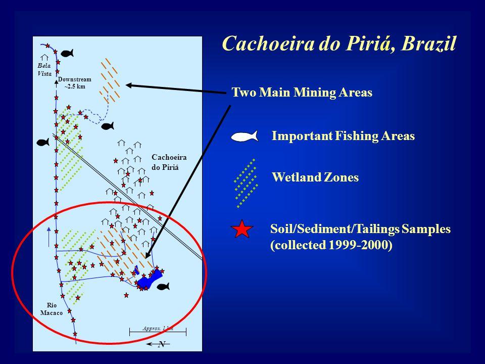 Wetland Zones Cachoeira do Piriá Approx. 1 km Two Main Mining Areas Rio Macaco N Bela Vista Downstream ~2.5 km Important Fishing Areas Soil/Sediment/T