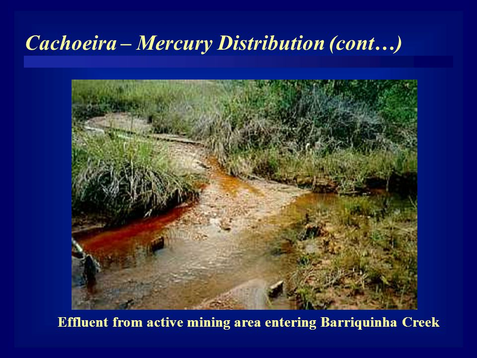Effluent from active mining area entering Barriquinha Creek Cachoeira – Mercury Distribution (cont…)