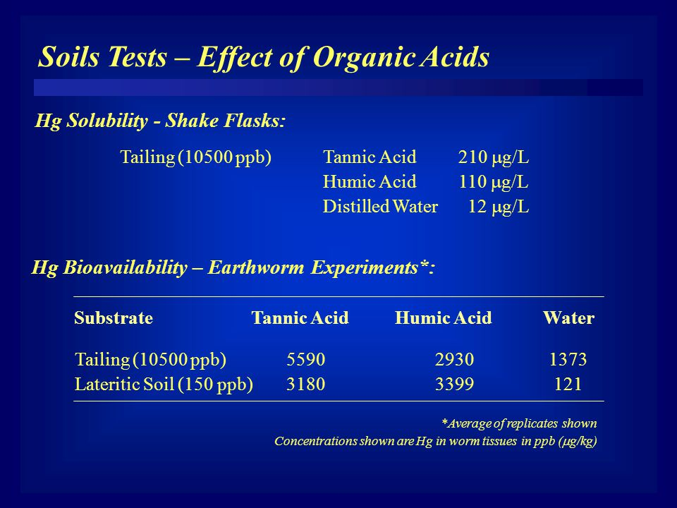 Soils Tests – Effect of Organic Acids Hg Solubility - Shake Flasks: Tailing (10500 ppb)Tannic Acid210  g/L Humic Acid110  g/L Distilled Water 12  g/L Tailing (10500 ppb)559029301373 Lateritic Soil (150 ppb)31803399 121 SubstrateTannic Acid Humic AcidWater *Average of replicates shown Concentrations shown are Hg in worm tissues in ppb (  g/kg) Hg Bioavailability – Earthworm Experiments*: