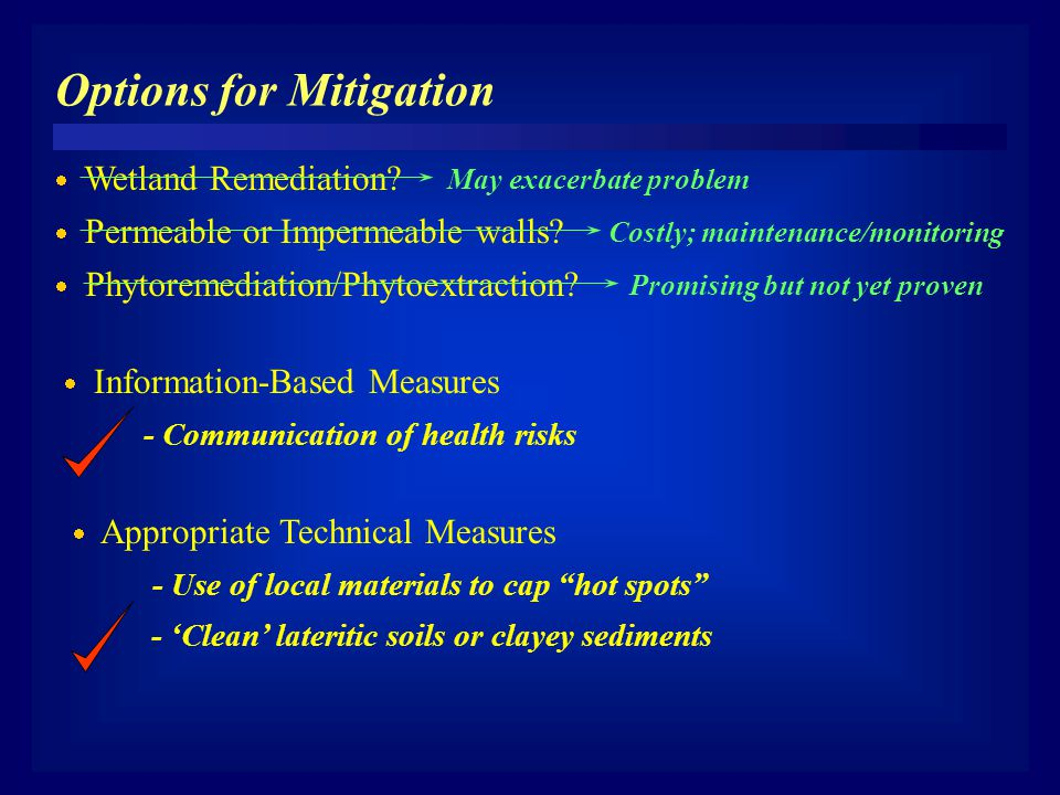 Options for Mitigation  Information-Based Measures - Communication of health risks  Wetland Remediation? May exacerbate problem  Permeable or Imper