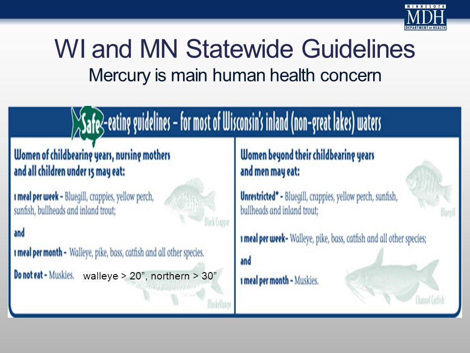 Mercury Levels in Blood from Newborns in the Lake Superior Basin: Goals Determine range of mercury concentrations in newborns from Lake Superior Basin Assess feasibility of a novel method to analyze mercury in residual dried blood spots from Newborn Screening Lake Superior Binational Program, Chemical Committee Are there exposures of concern in the Superior Basin.
