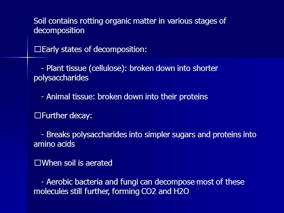 Soil contains rotting organic matter in various stages of decomposition Early states of decomposition: - Plant tissue (cellulose): broken down into sh