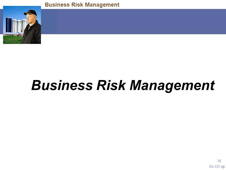 03-137-dp 18 Business Risk Management