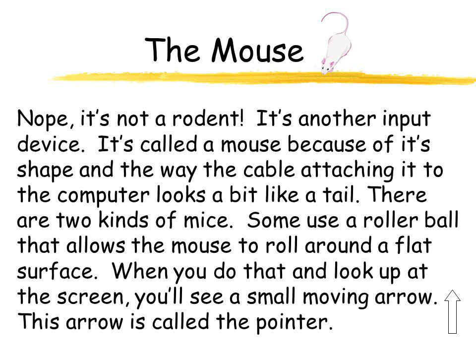 The Mouse Nope, it's not a rodent.It's another input device.