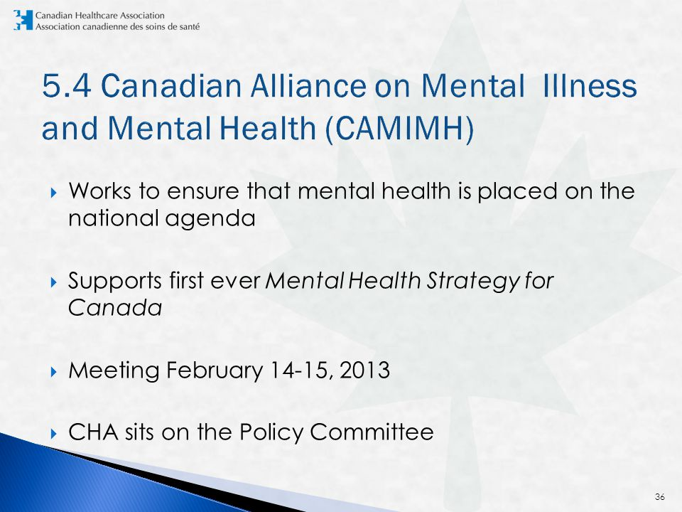  Works to ensure that mental health is placed on the national agenda  Supports first ever Mental Health Strategy for Canada  Meeting February 14-15, 2013  CHA sits on the Policy Committee 36