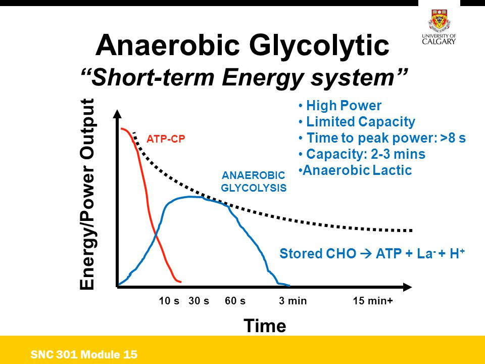 """Anaerobic Glycolytic """"Short-term Energy system"""" Time ATP-CP ANAEROBIC GLYCOLYSIS Energy/Power Output 10 s 30 s 60 s 3 min15 min+ SNC 301 Module 15 Hig"""