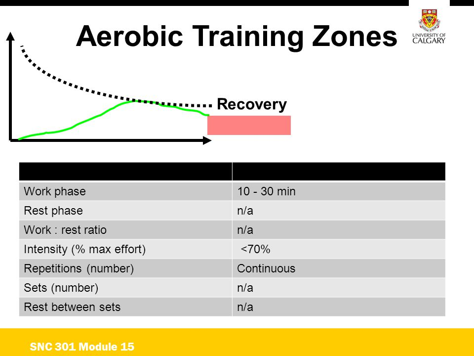 Aerobic Training Zones SNC 301 Module 15 Recovery Work phase10 - 30 min Rest phasen/a Work : rest ration/a Intensity (% max effort) <70% Repetitions (