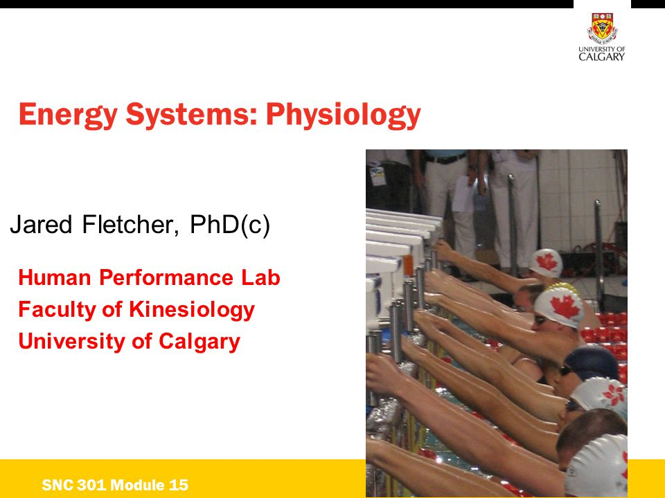 Energetics Energy/Power Output Time ATP-CP ANAEROBIC GLYCOLYSIS OXIDATIVE 10 s 30 s 60 s 3 min15 min+ SNC 301 Module 15