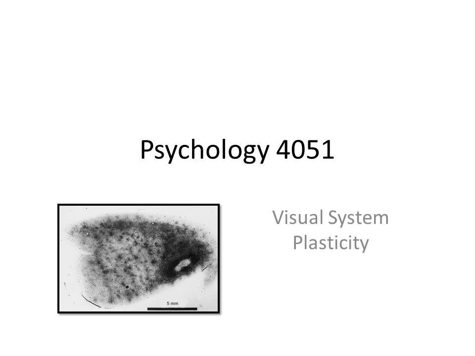Psychology 4051 Visual System Plasticity