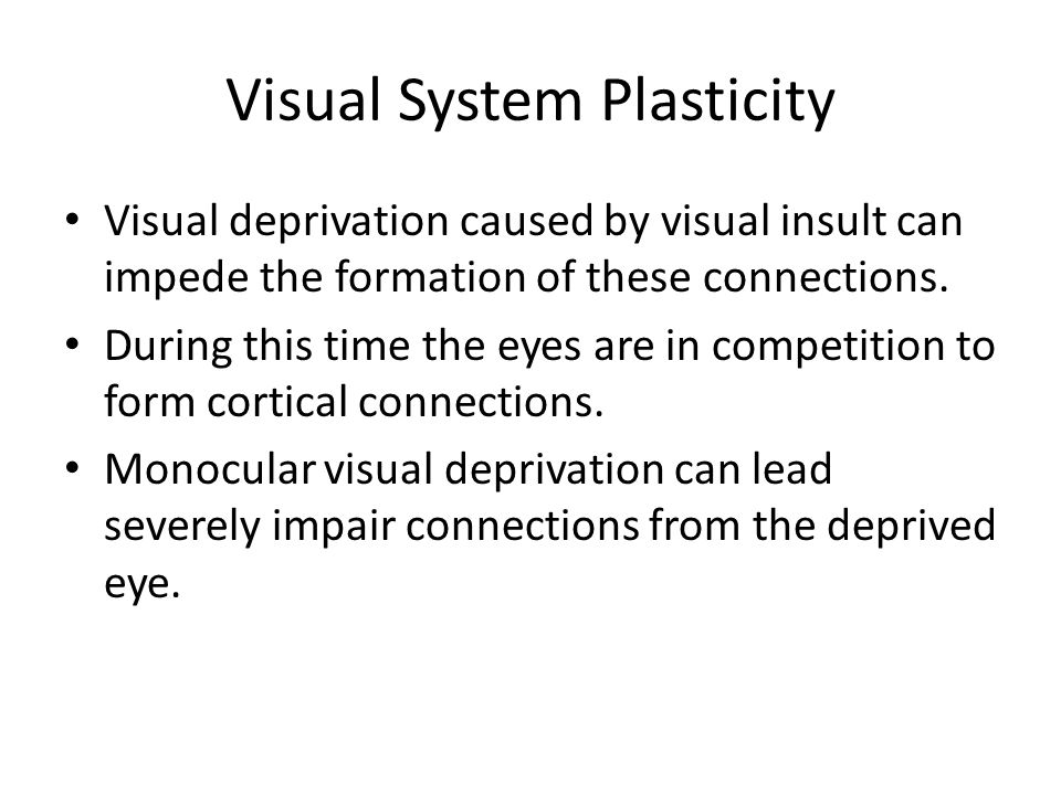 Visual System Plasticity Visual deprivation caused by visual insult can impede the formation of these connections. During this time the eyes are in co