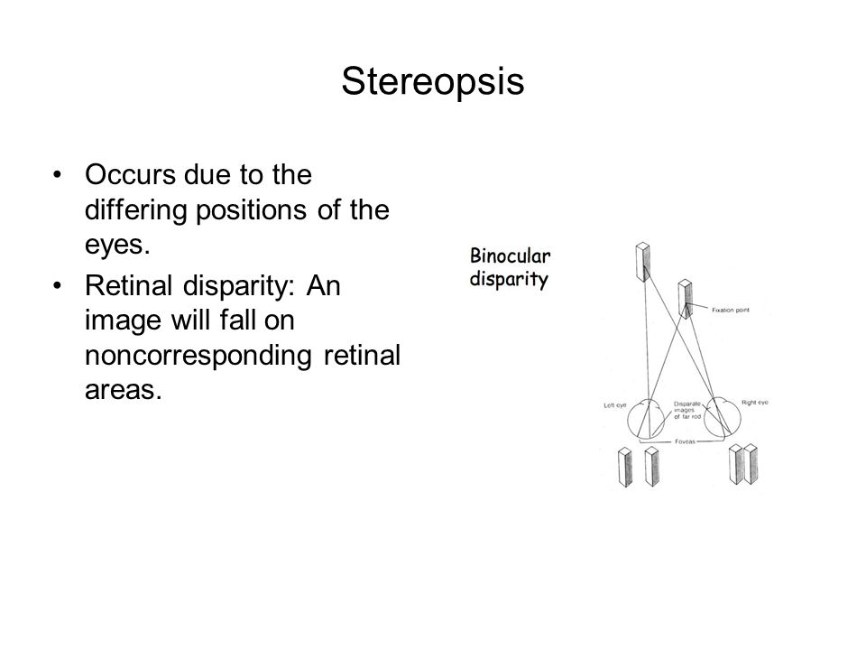 Stereopsis Occurs due to the differing positions of the eyes.