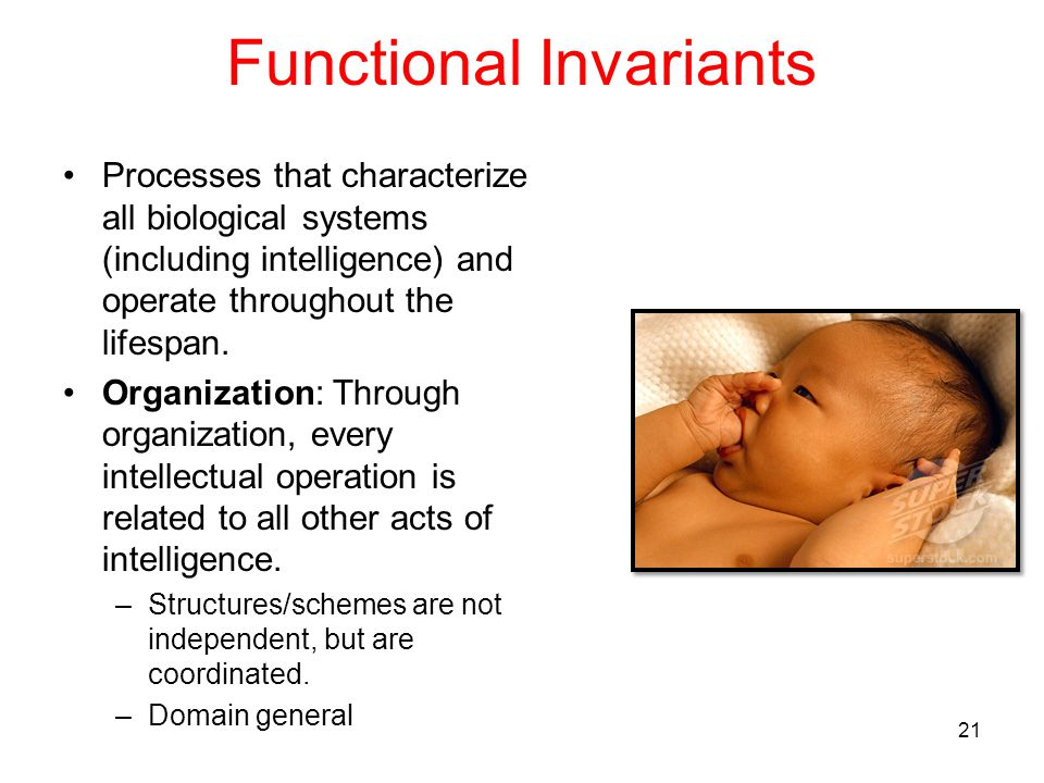 Functional Invariants Processes that characterize all biological systems (including intelligence) and operate throughout the lifespan. Organization: T