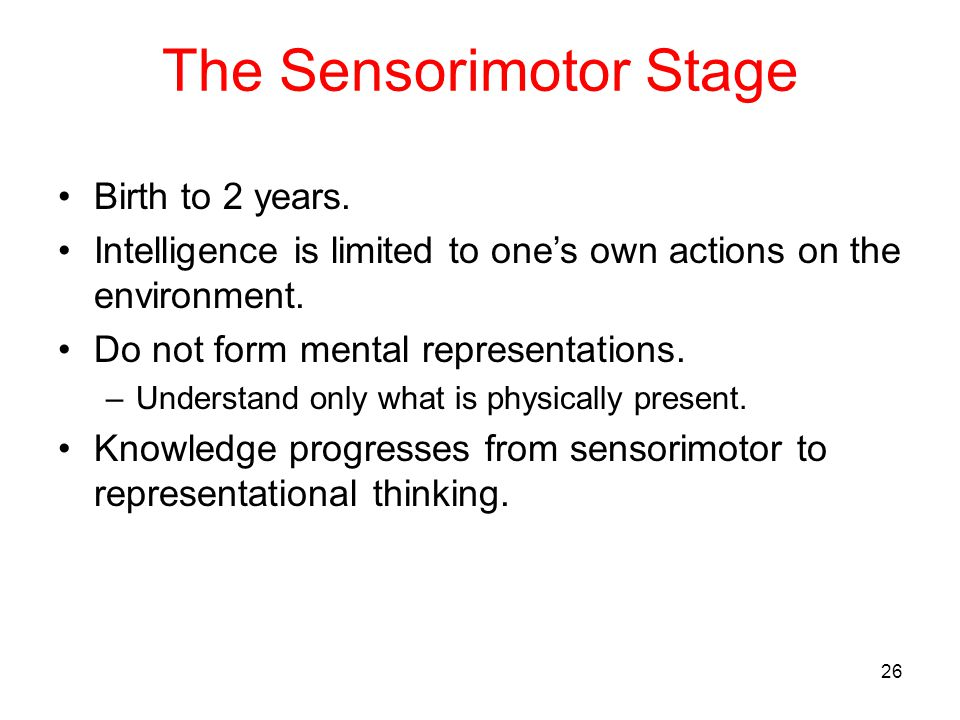The Sensorimotor Stage Birth to 2 years. Intelligence is limited to one's own actions on the environment. Do not form mental representations. –Underst