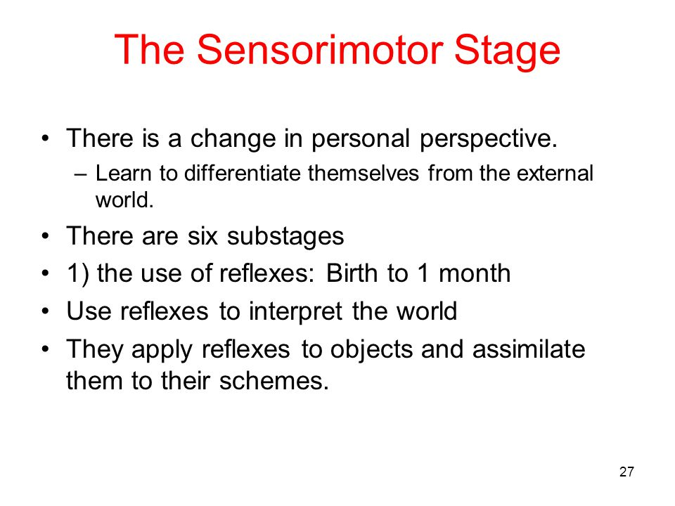 The Sensorimotor Stage There is a change in personal perspective. –Learn to differentiate themselves from the external world. There are six substages