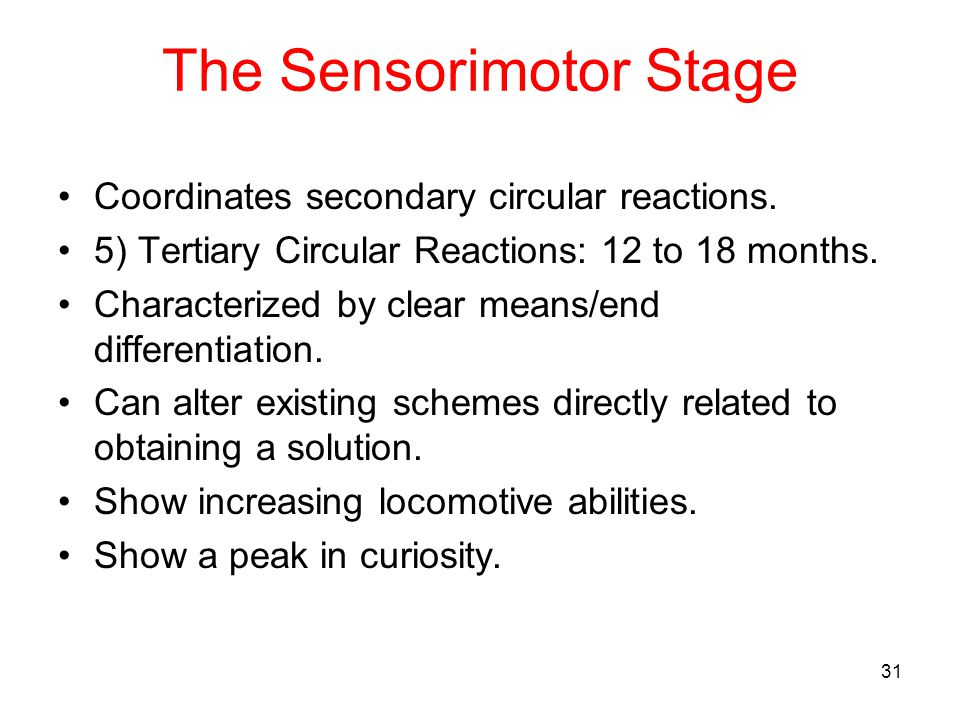 The Sensorimotor Stage Coordinates secondary circular reactions. 5) Tertiary Circular Reactions: 12 to 18 months. Characterized by clear means/end dif