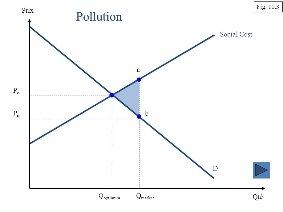 Qté Prix D Q market Social Cost Pollution Q optimum Fig PoPo PmPm a b
