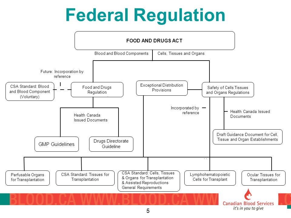 5 Federal Regulation Perfusable Organs for Transplantation CSA Standard: Tissues for Transplantation CSA Standard: Cells, Tissues & Organs for Transplantation & Assisted Reproductions General Requirements CSA Standard: Blood and Blood Component (Voluntary) Food and Drugs Regulation GMP Guidelines Drugs Directorate Guideline Safety of Cells Tissues and Organs Regulations Draft Guidance Document for Cell, Tissue and Organ Establishments Lymphohematopoietic Cells for Transplant Ocular Tissues for Transplantation Cells, Tissues and OrgansBlood and Blood Components Health Canada Issued Documents Future: Incorporation by reference Health Canada Issued Documents Incorporated by reference Exceptional Distribution Provisions FOOD AND DRUGS ACT