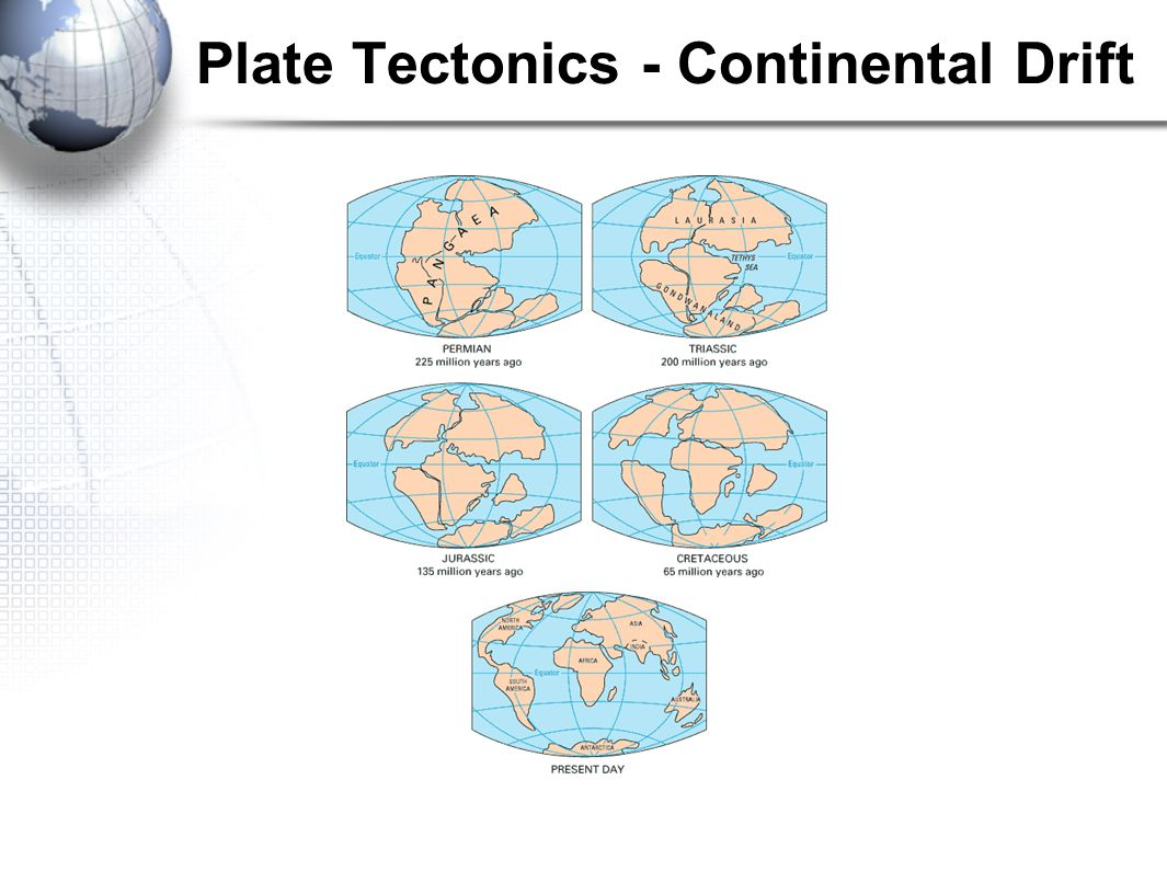 Founder of the Continental Drift Theory Alfred Wegener came up with the idea in the early 1900's. He believed that the world shared certain characteri