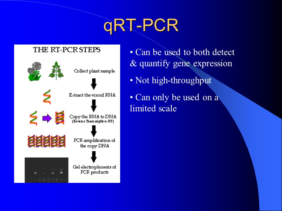 qRT-PCR Can be used to both detect & quantify gene expression Not high-throughput Can only be used on a limited scale