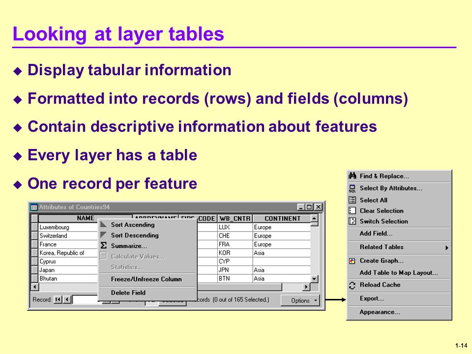 1-14 Looking at layer tables  Display tabular information  Formatted into records (rows) and fields (columns)  Contain descriptive information abou