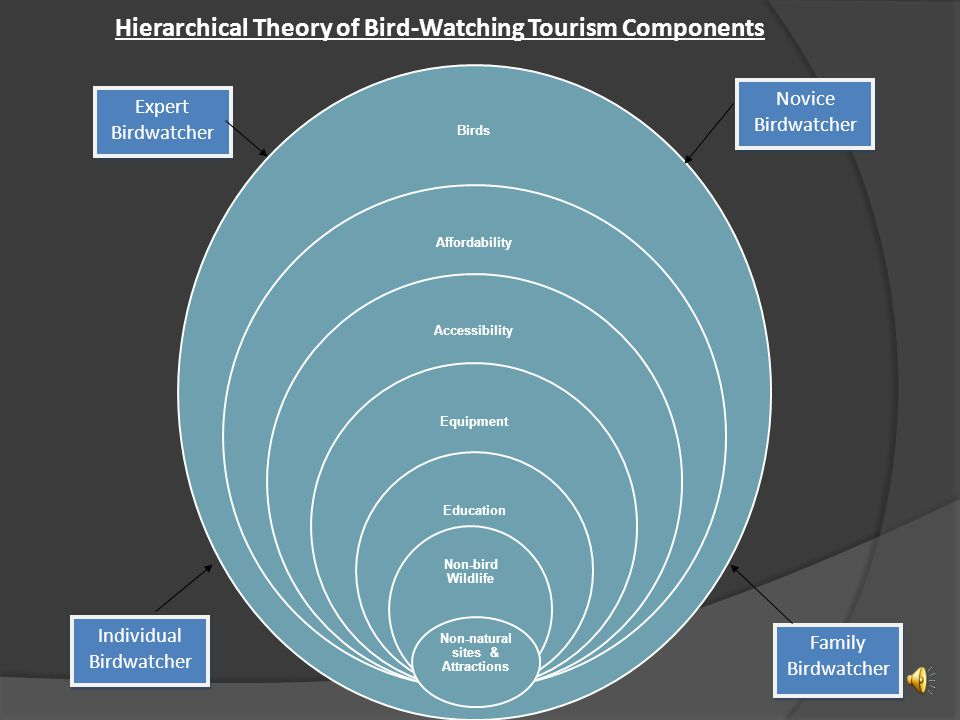 Findings of Blog Analysis  Bird-watching tourism is much more complicated then initially thought.
