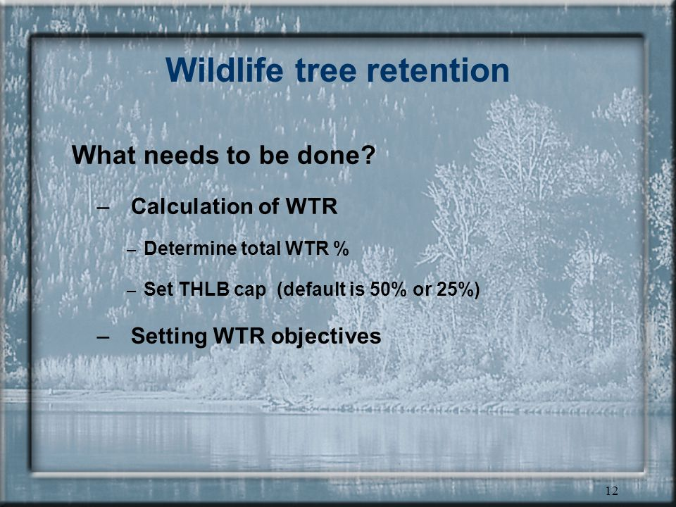 12 Wildlife tree retention What needs to be done.