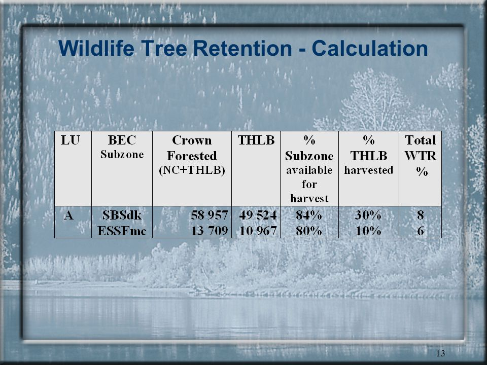 13 Wildlife Tree Retention - Calculation
