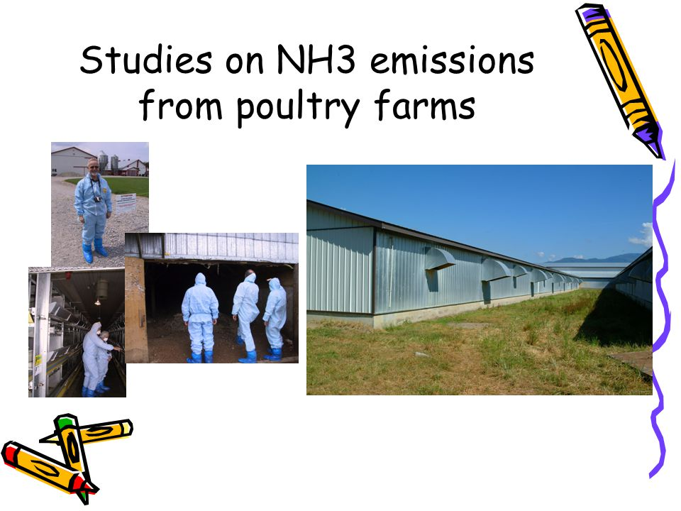 Studies on NH3 emissions from poultry farms