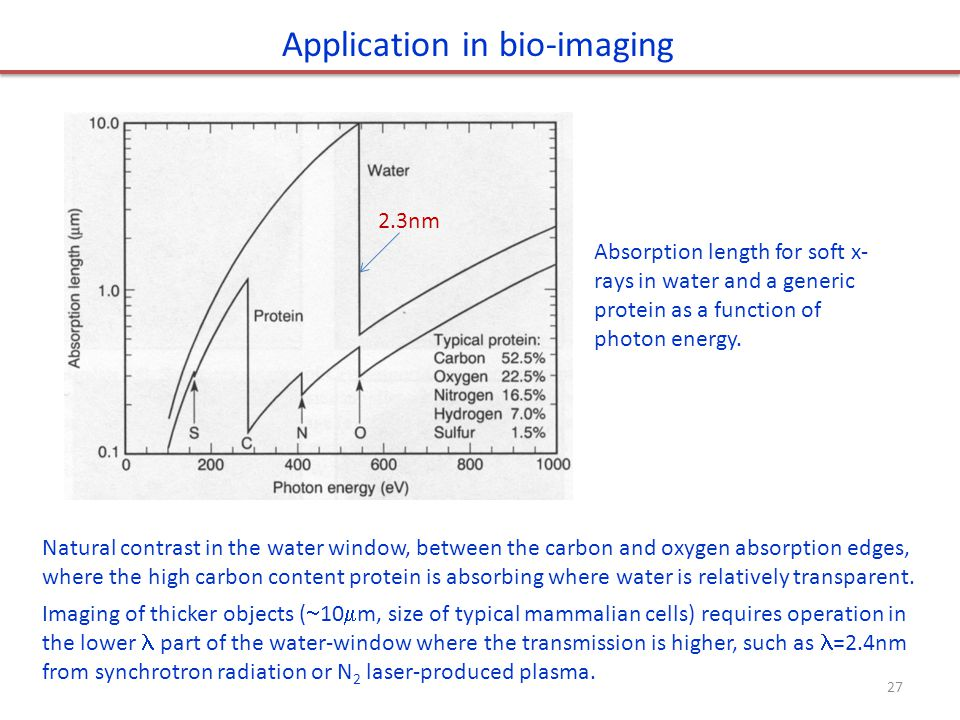 Application in bio-imaging Absorption length for soft x- rays in water and a generic protein as a function of photon energy. Natural contrast in the w
