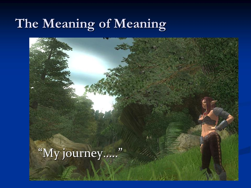 The Meaning of Meaning My journey…..
