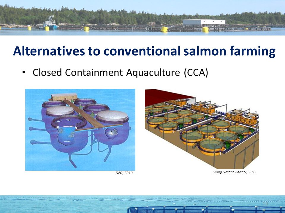 Alternatives to conventional salmon farming Closed Containment Aquaculture (CCA) DFO, 2010 Living Oceans Society, 2011 13