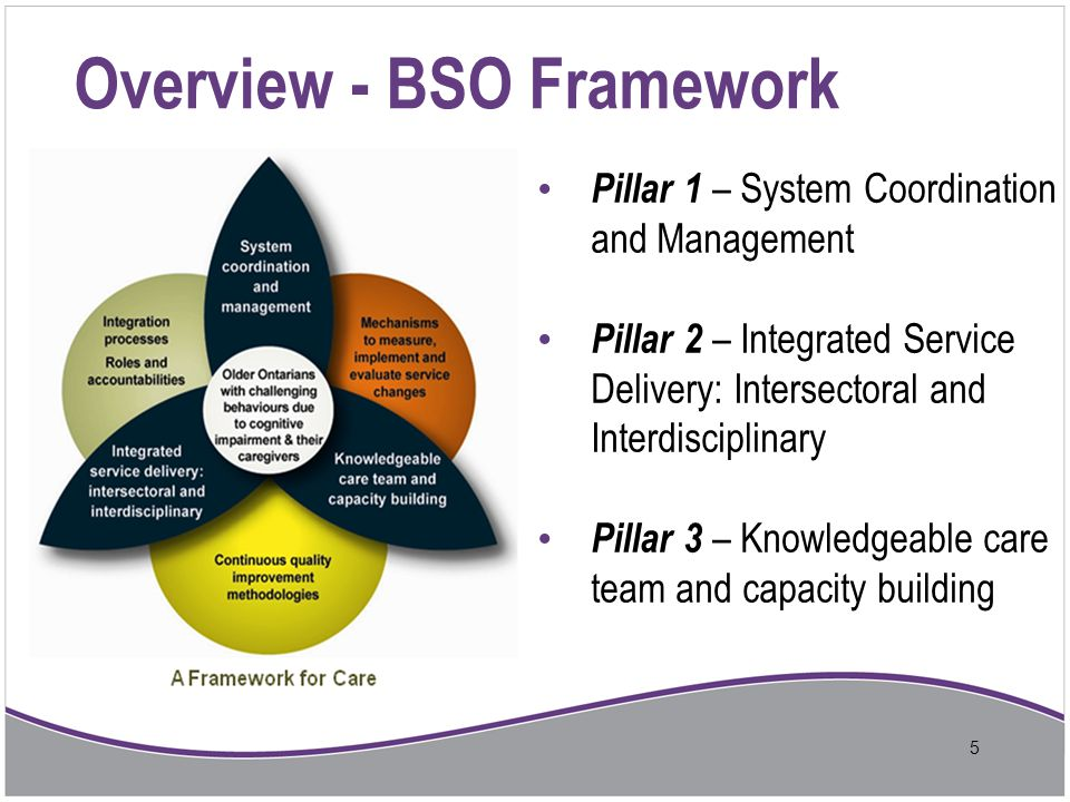 BSO in Central East – Early Successes Impact: 886 residents assessed and served in 13 Early Adopter LTC homes in 2012-2013 1520 staff trained (2610 training days) Behavioural Assessment Tool, Whiteboard, Client Care Process Flow utilized in 72% of Central East LTCHs Community – draft design of Client Care Process Flow developed Client Stories: Decrease of behavioural incidents in clients with responsive behaviours Increased client cooperation with activities of daily care Decrease in use of physical and pharmacological restraints to control behaviours Admission of people with difficult behaviours from tertiary care settings and behavioural support units 16