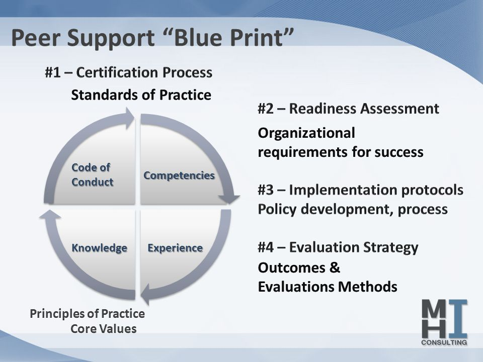 Peer Support Blue Print Code of Conduct Competencies KnowledgeExperience