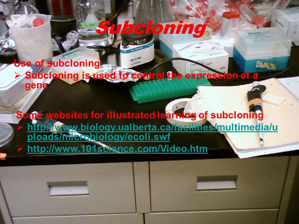 Use of subcloning  Subcloning is used to control the expression of a gene Some websites for illustrated learning of subcloning  http://www.biology.ualberta.ca/facilities/multimedia/u ploads/microbiology/ecoli.swf http://www.biology.ualberta.ca/facilities/multimedia/u ploads/microbiology/ecoli.swf  http://www.101science.com/Video.htm http://www.101science.com/Video.htm